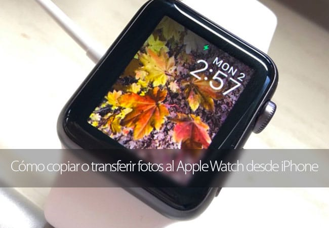 Copiar o transferir fotos al Apple Watch
