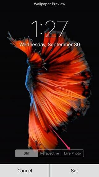 Live Photos como fondo de pantalla en iPhone 6s