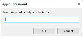 Password Apple ID
