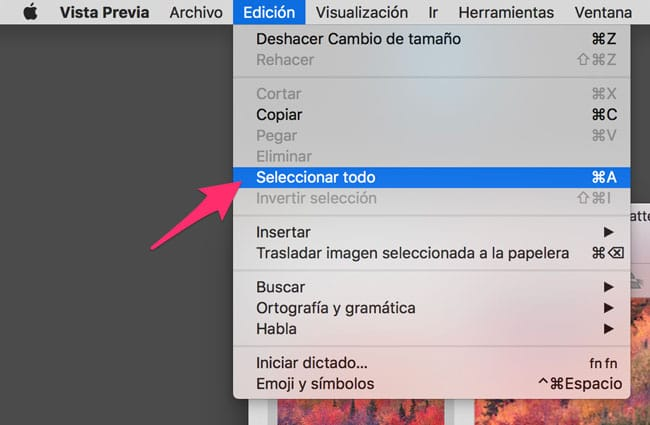 Edición - Seleccionar Todo en Vista Previa de macOS
