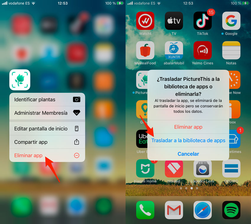 Trasladar app a Biblioteca de Apps